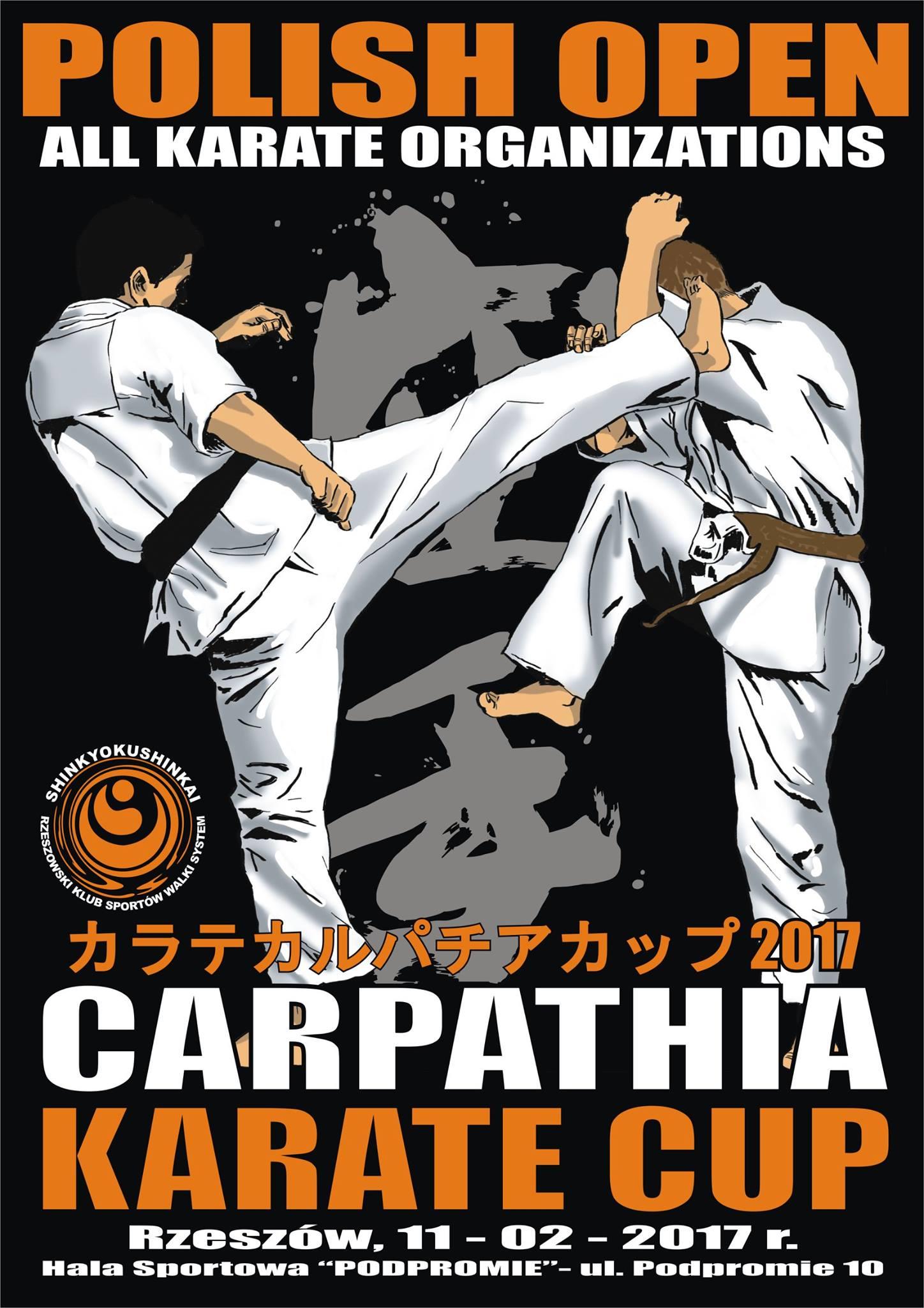 Turniej Carpathia Cup 2017 w Rzeszowie