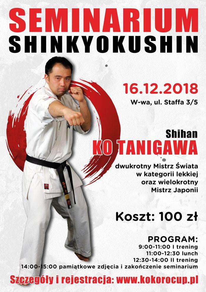 Seminarium kumite 16.12.2018